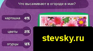 matreshka211