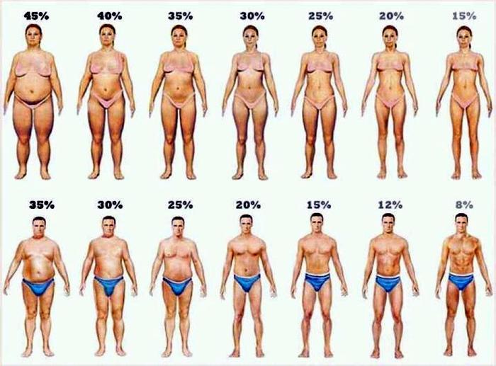 Что такое сушка тела для женщин в домашних условиях 793